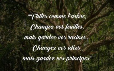 """Parfois nous avons juste besoin d un coup de pouce pour """"changer nos feuilles"""" …."""